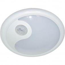 Настенно-потолочный светильник Feron FN1200 23290