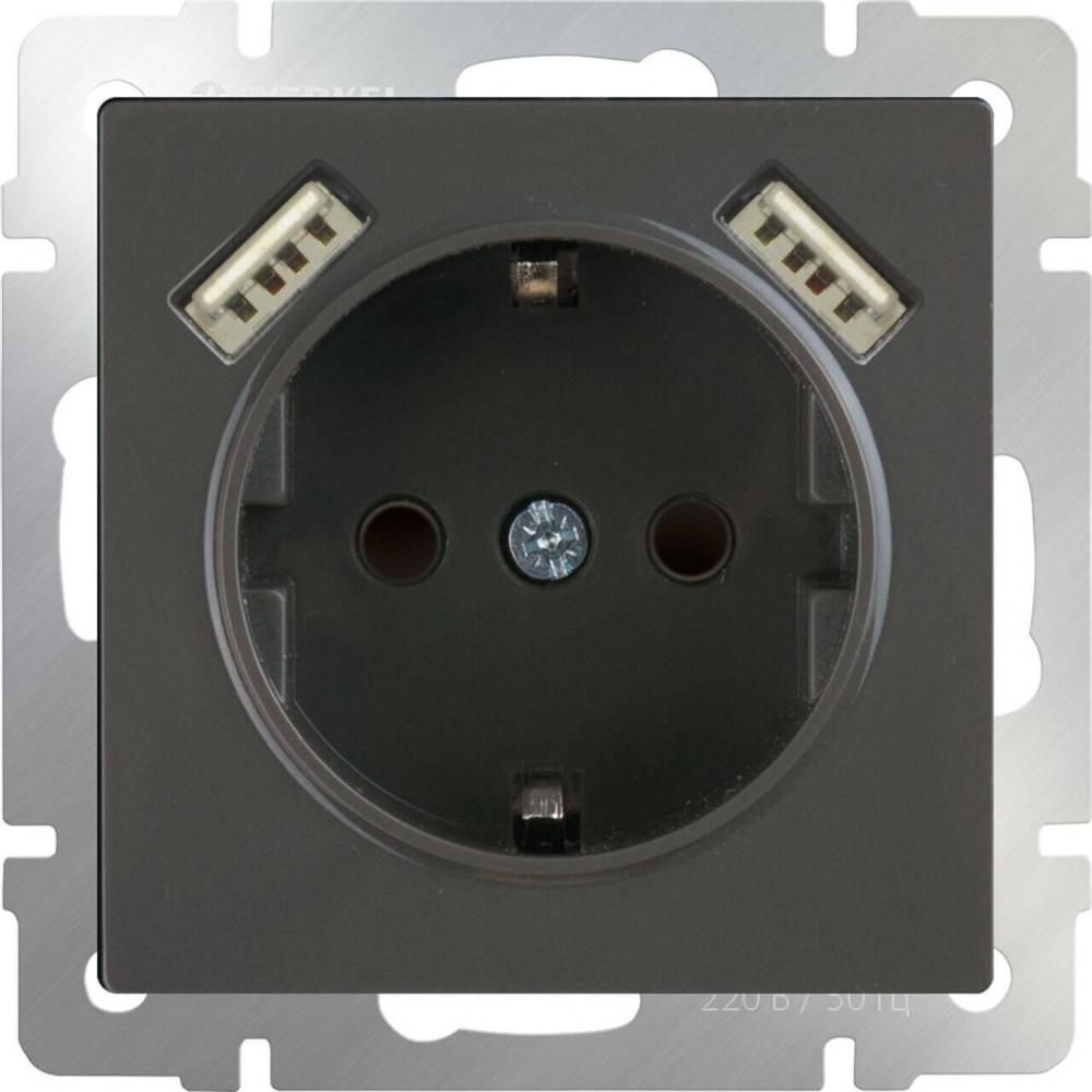Розетка с заземлением, шторками и USBx2 серо-коричневая WL07-SKGS-USBx2-IP20 4690389073229